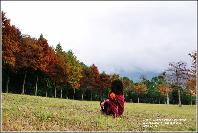 光復森林公園-2017-12-10.jpg