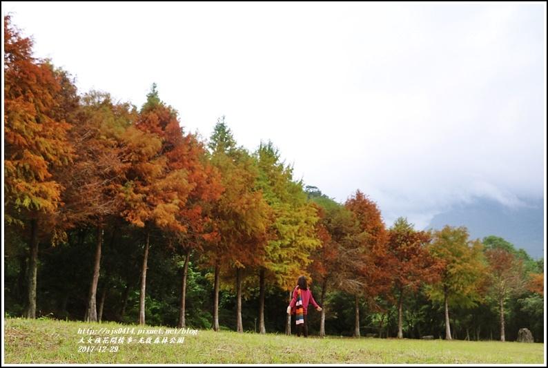 光復森林公園-2017-12-13.jpg