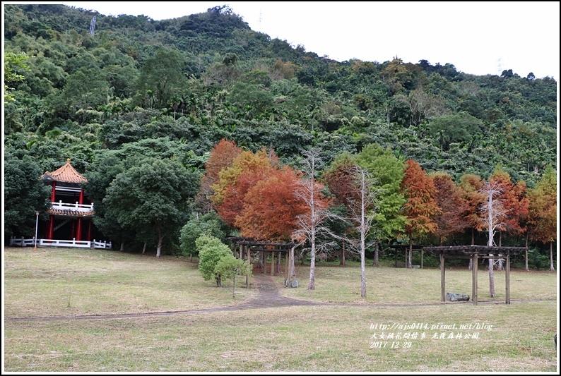 光復森林公園-2017-12-20.jpg