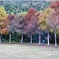 光復森林公園-2018-01-25.jpg
