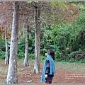光復森林公園-2018-01-30.jpg