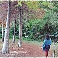 光復森林公園-2018-01-31.jpg
