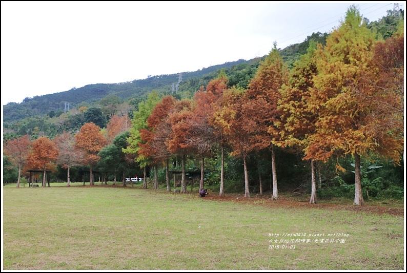 光復森林公園-2018-01-34.jpg