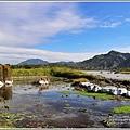 新良濕地-2017-12-03.jpg