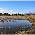 新良濕地-2017-12-12.jpg
