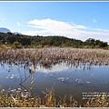 新良濕地-2017-12-11.jpg