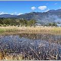 新良濕地-2017-12-15.jpg