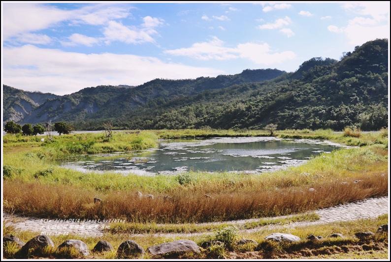 新良濕地-2017-12-17.jpg