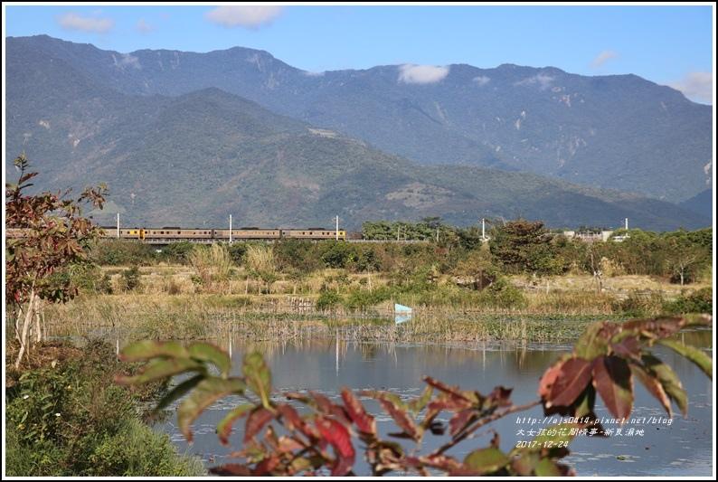 新良濕地-2017-12-21.jpg