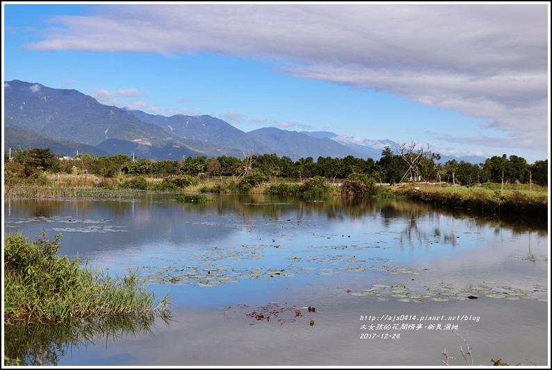 新良濕地-2017-12-23.jpg