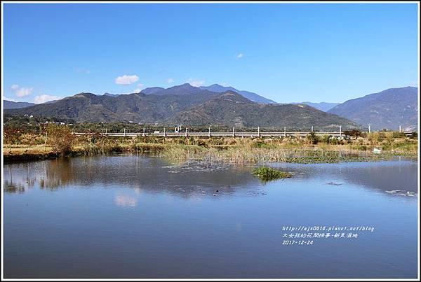 新良濕地-2017-12-24.jpg