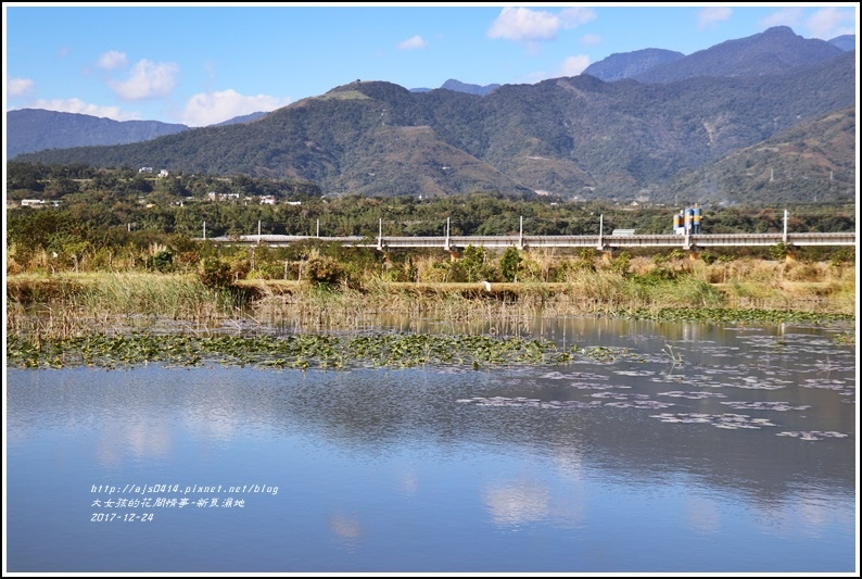 新良濕地-2017-12-26.jpg