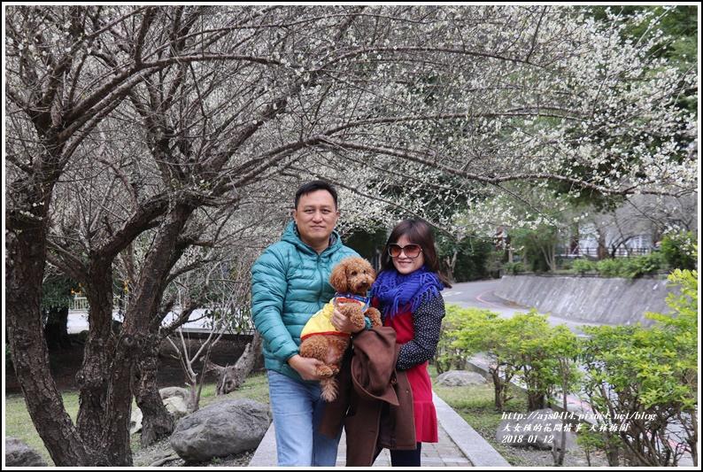 天祥梅園-2018-01-07.jpg
