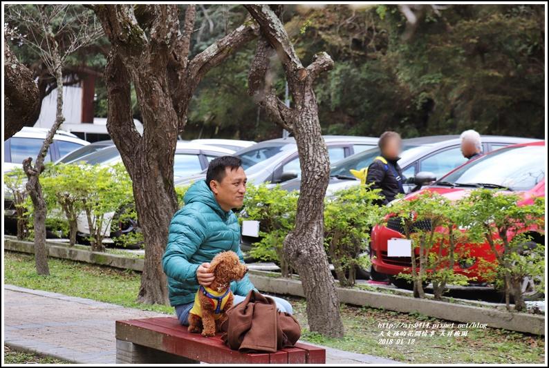 天祥梅園-2018-01-30.jpg