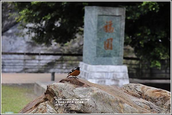 天祥梅園-2018-01-59.jpg