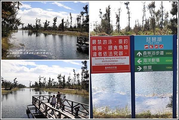 台東森林公園(琵琶湖)-2017-12-03.jpg