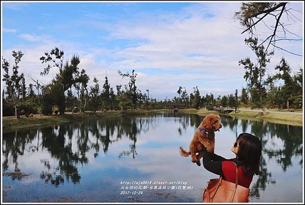 台東森林公園(琵琶湖)-2017-12-15.jpg