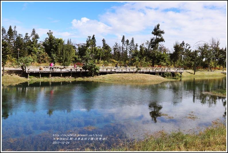 台東森林公園(琵琶湖)-2017-12-20.jpg