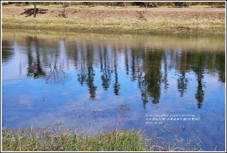 台東森林公園(琵琶湖)-2017-12-27.jpg