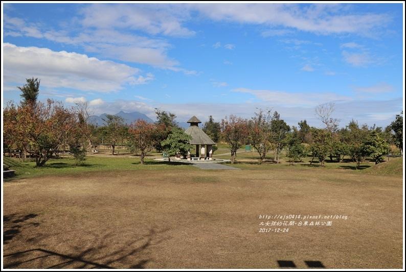 台東森林公園-2017-12-03.jpg