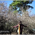 羅山瀑布(梅園)-2018-01-02.jpg