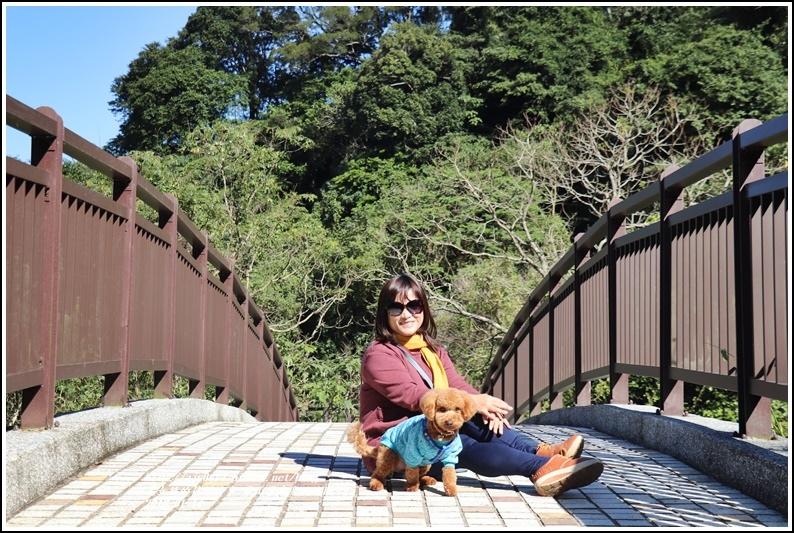 羅山瀑布(梅園)-2018-01-05.jpg