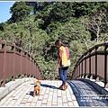 羅山瀑布(梅園)-2018-01-06.jpg