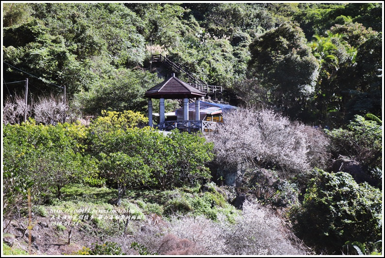 羅山瀑布(梅園)-2018-01-15.jpg