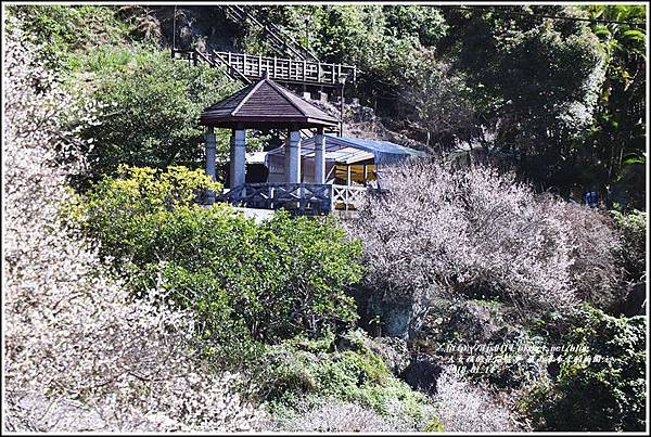 羅山瀑布(梅園)-2018-01-20.jpg