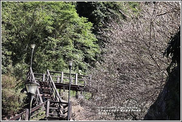 羅山瀑布(梅園)-2018-01-26.jpg