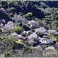 羅山瀑布(梅園)-2018-01-30.jpg