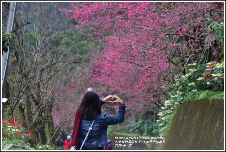 玉山神學院櫻花-2018-01-57.jpg