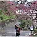 玉山神學院櫻花-2018-01-67.jpg