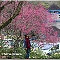 玉山神學院櫻花-2018-01-69.jpg