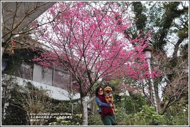 玉山神學院櫻花-2018-01-72.jpg