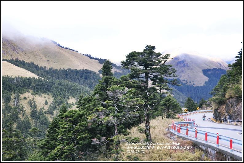 台14甲線(合歡山)-2018-01-20.jpg