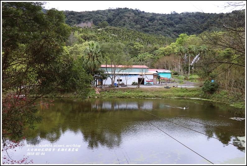 東湖生態農場-2018-02-07.jpg