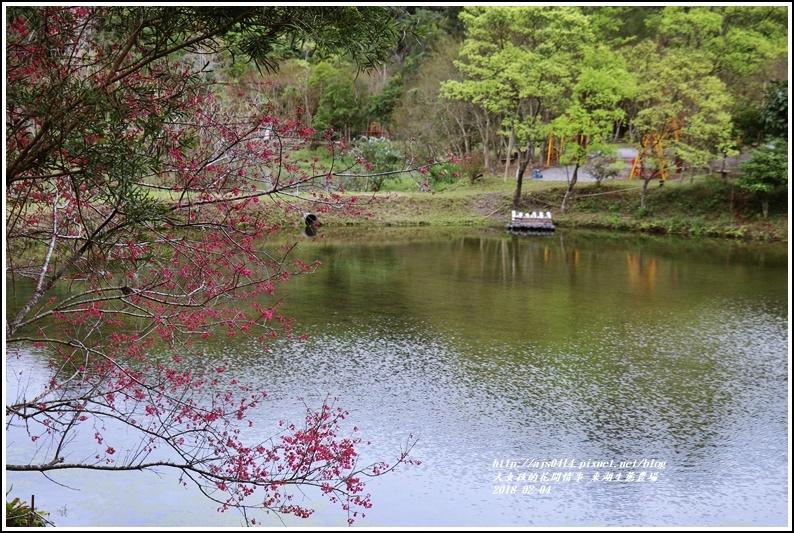 東湖生態農場-2018-02-08.jpg