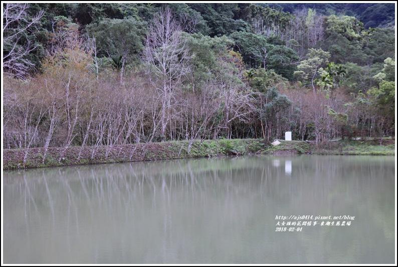 東湖生態農場-2018-02-19.jpg
