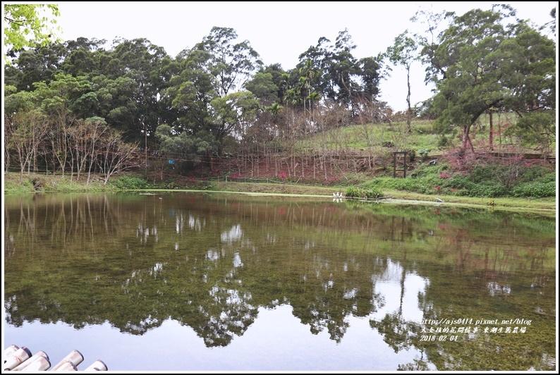 東湖生態農場-2018-02-34.jpg