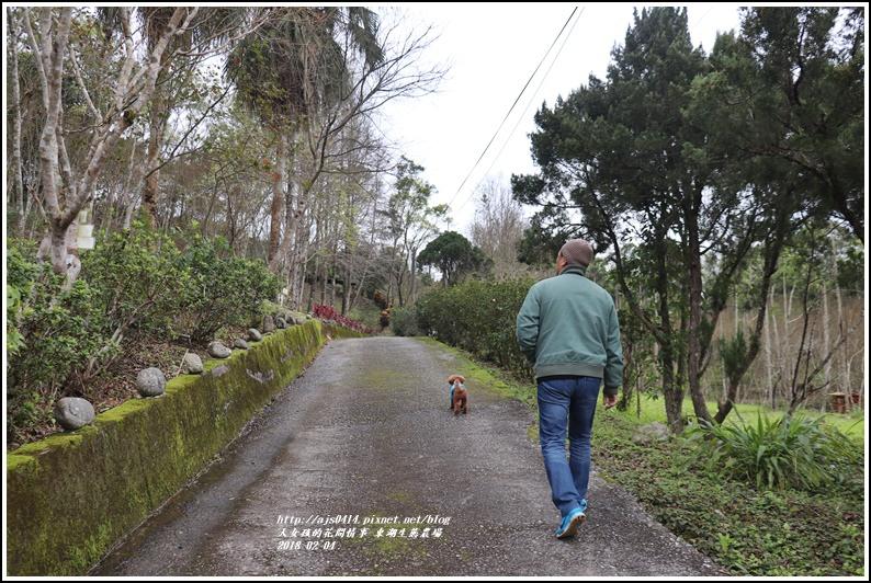 東湖生態農場-2018-02-49.jpg