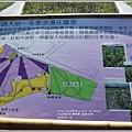 富里花海-2018-01-36.jpg