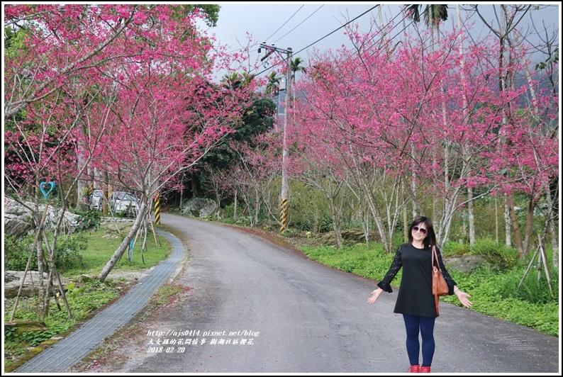 樹湖櫻花-2018-02-13.jpg