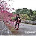 樹湖櫻花-2018-02-34.jpg