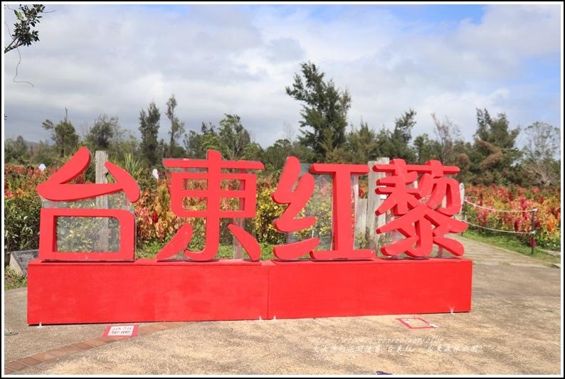台東紅藜(台東森林公園)-2018-02-01.jpg