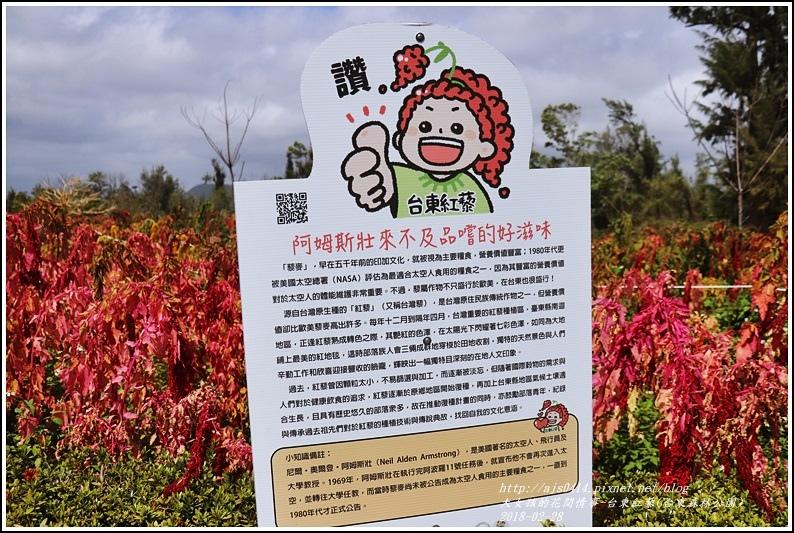 台東紅藜(台東森林公園)-2018-02-14.jpg