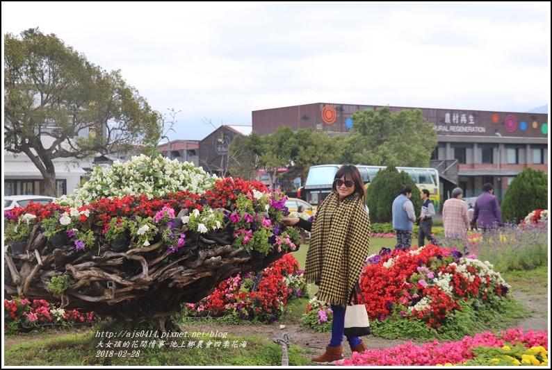 池上鄉農會四季花海-2018-02-11.jpg
