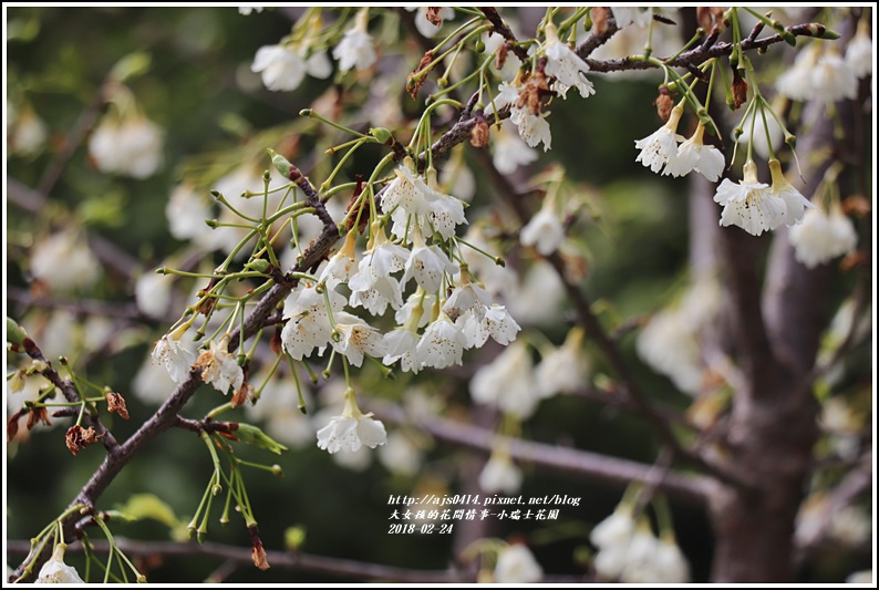 小瑞士花園-2018-02-38.jpg