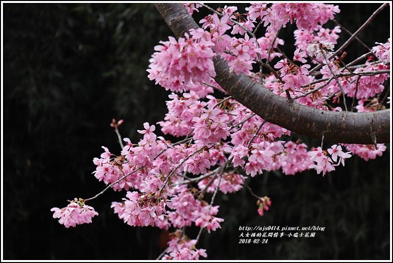 小瑞士花園-2018-02-65.jpg