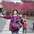 九族文化村櫻花季-2018-02-07.jpg